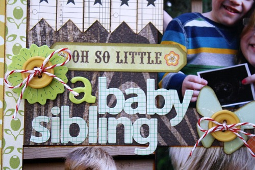 A baby sibling 1